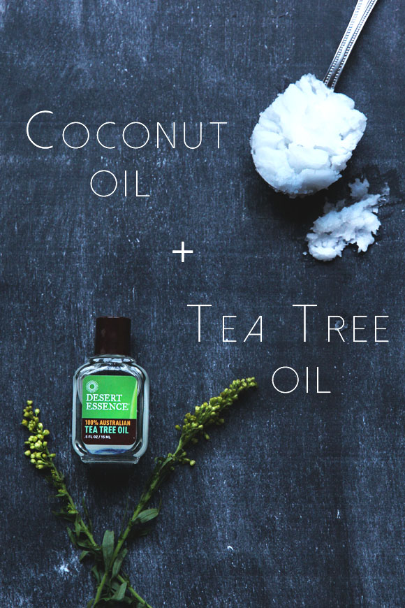 letters_and_beads_beauty_diy_abendroutine_tea_tree_oil_coconut_oil_bldg25